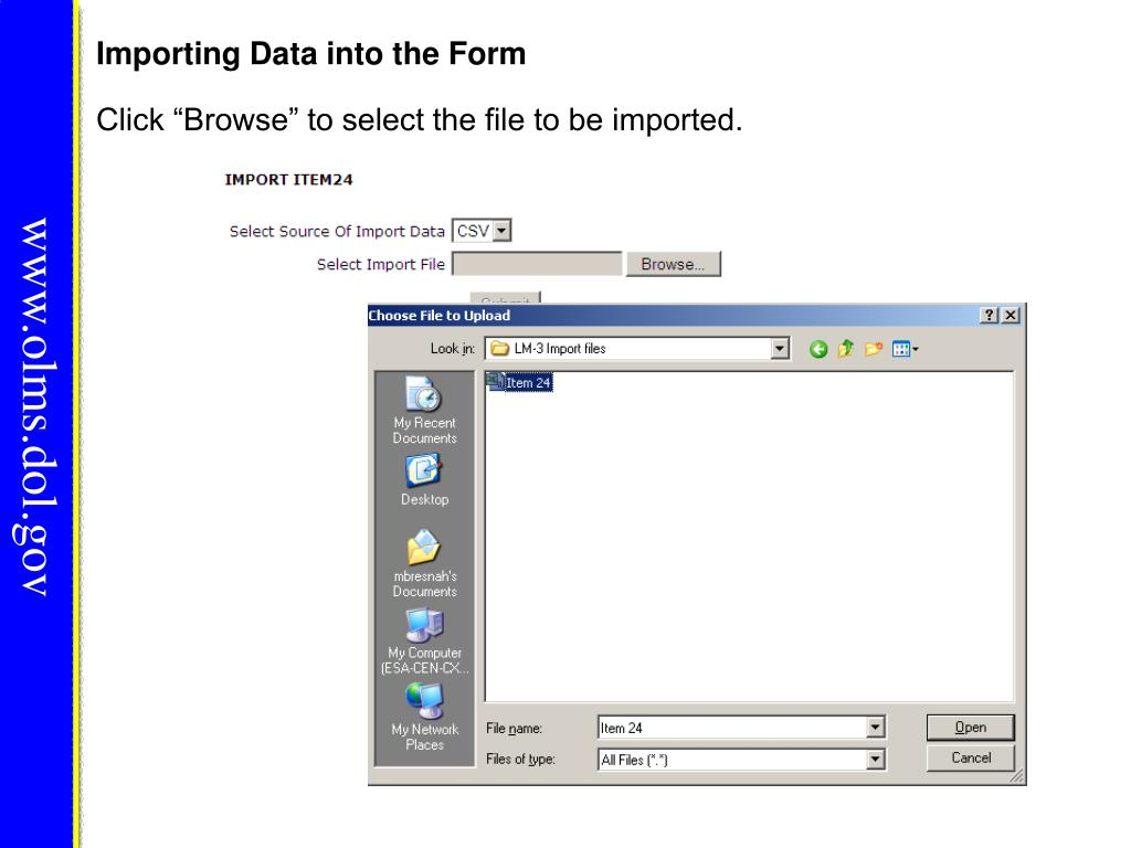 Importing Data into the Form