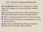 cli common language infrastructure