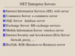net enterprise servers