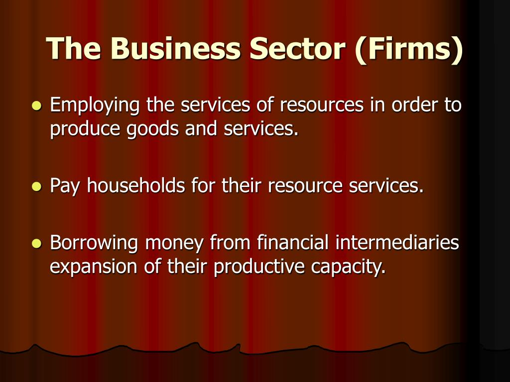 The Business Sector (Firms)
