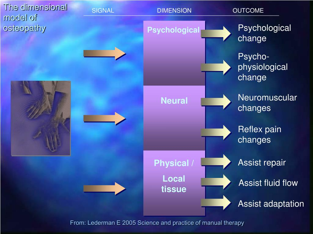 The dimensional model of osteopathy