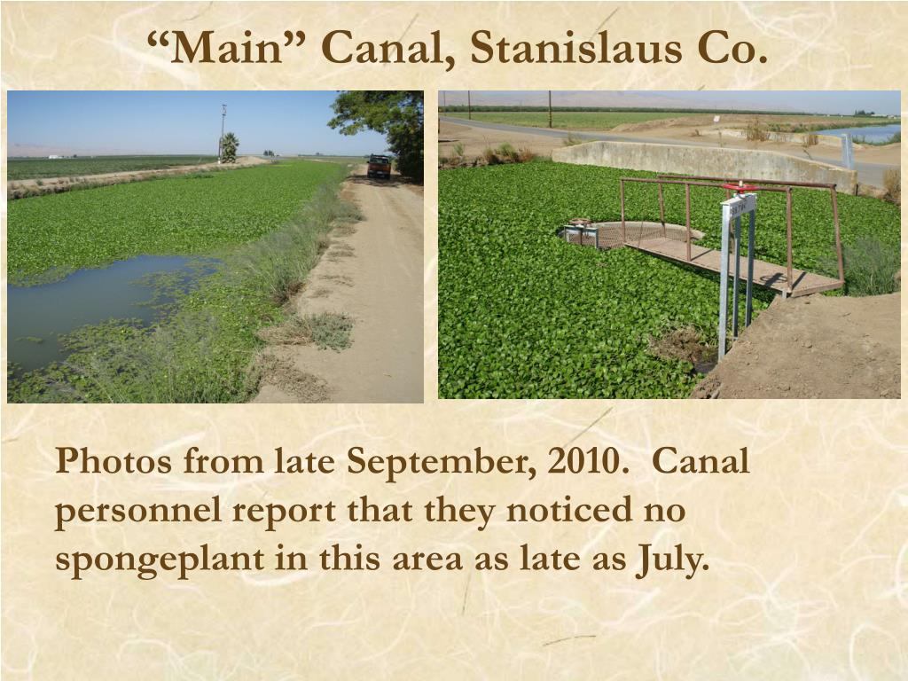 """""""Main"""" Canal, Stanislaus Co."""