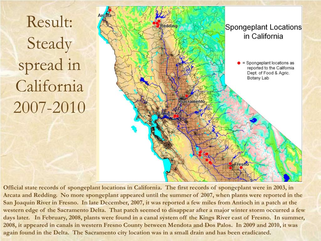 Result: Steady spread in California