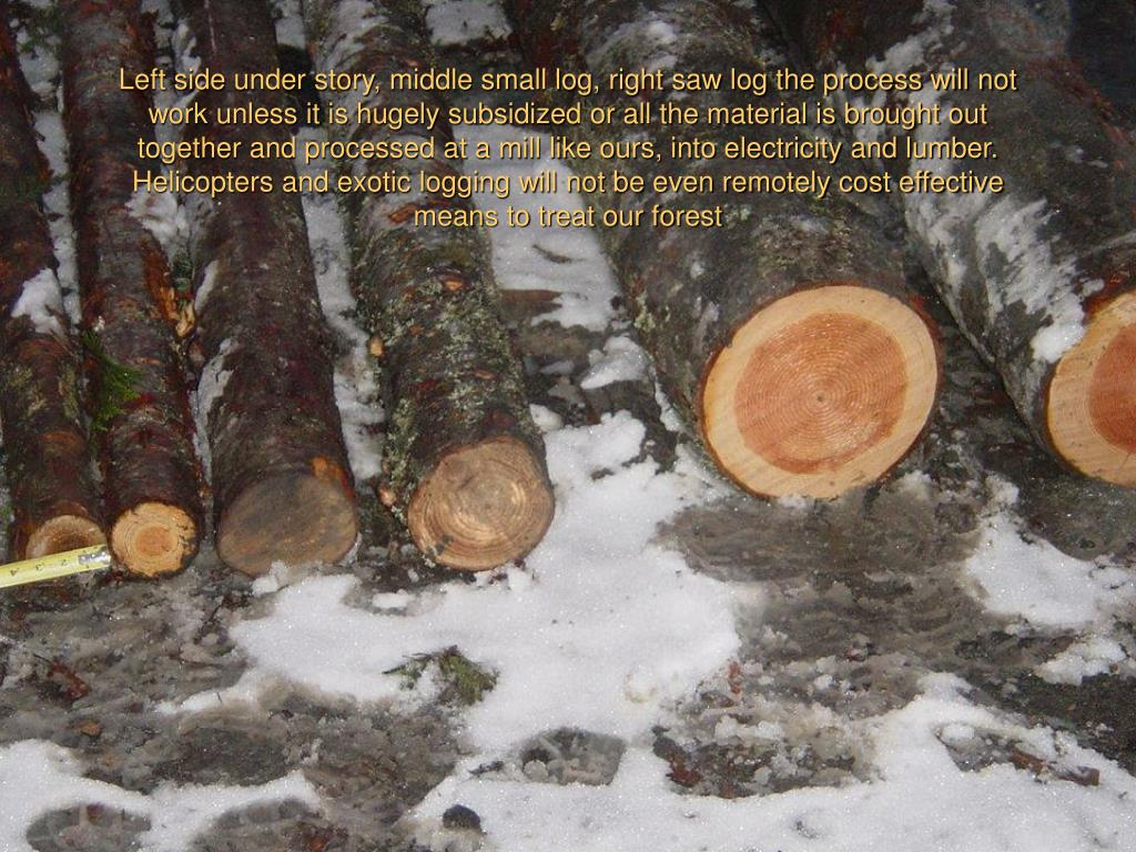 Left side under story, middle small log, right saw log the process will not work unless it is hugely subsidized or all the material is brought out together and processed at a mill like ours, into electricity and lumber. Helicopters and exotic logging will not be even remotely cost effective means to treat our forest