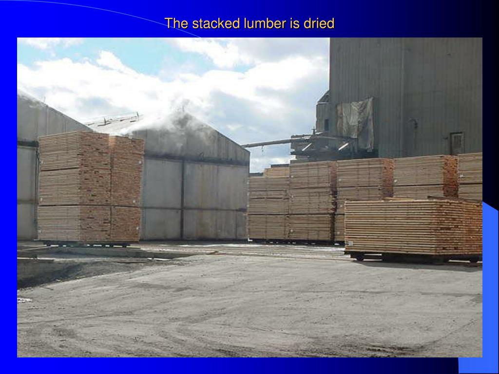The stacked lumber is dried
