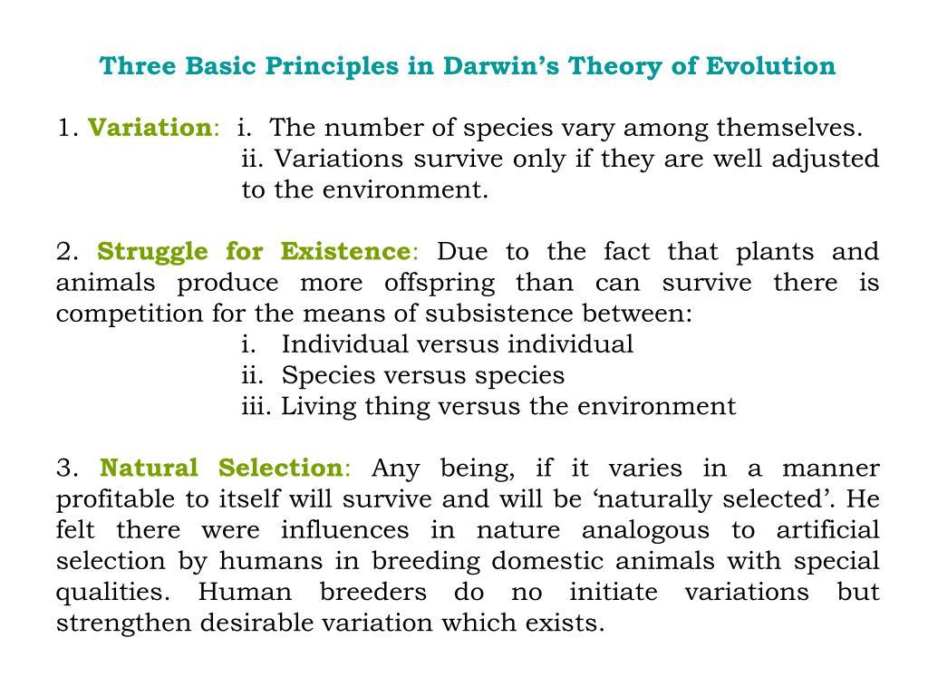 Three Basic Principles in Darwin's Theory of Evolution