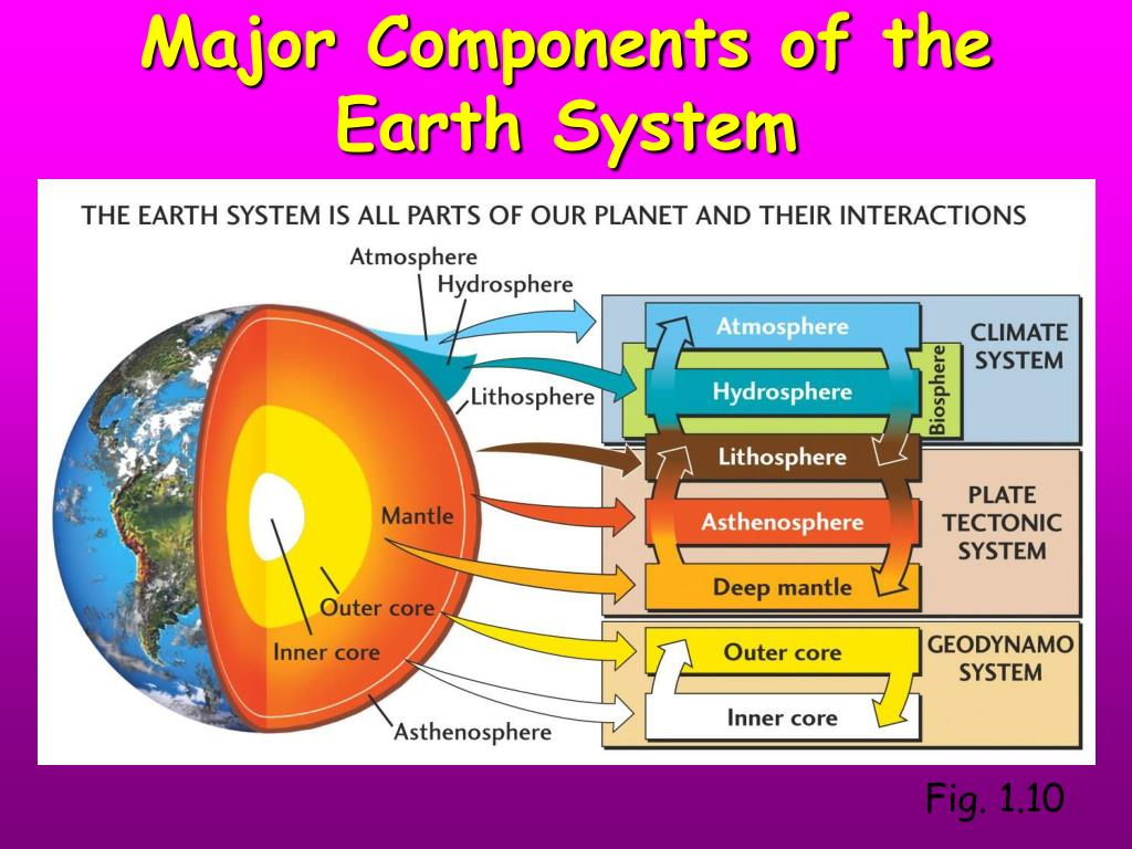 Major Components of the