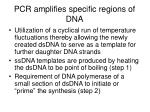 pcr amplifies specific regions of dna5