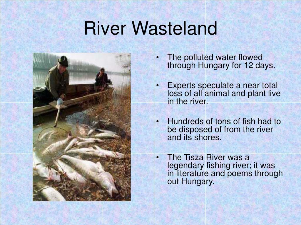 River Wasteland