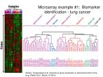 microarray example 1 biomarker identification lung cancer