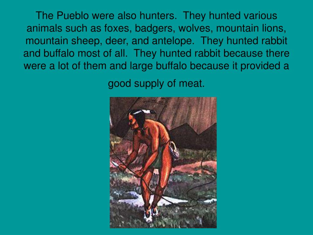 The Pueblo were also hunters.  They hunted various animals such as foxes, badgers, wolves, mountain lions, mountain sheep, deer, and antelope.  They hunted rabbit and buffalo most of all.  They hunted rabbit because there were a lot of them and large buffalo because it provided a good supply of meat.