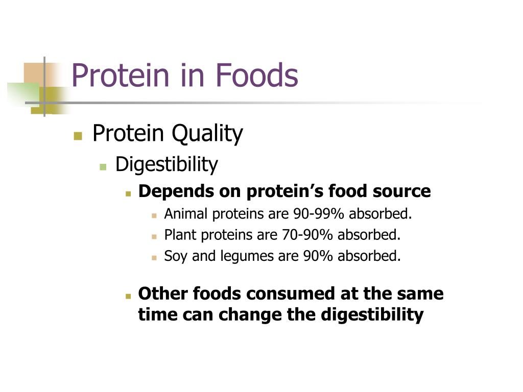 Protein in Foods