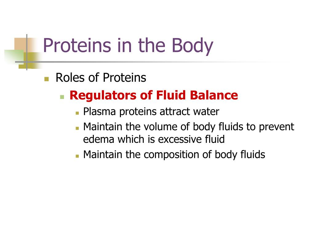 Proteins in the Body