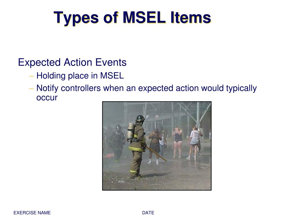 Types of MSEL Items