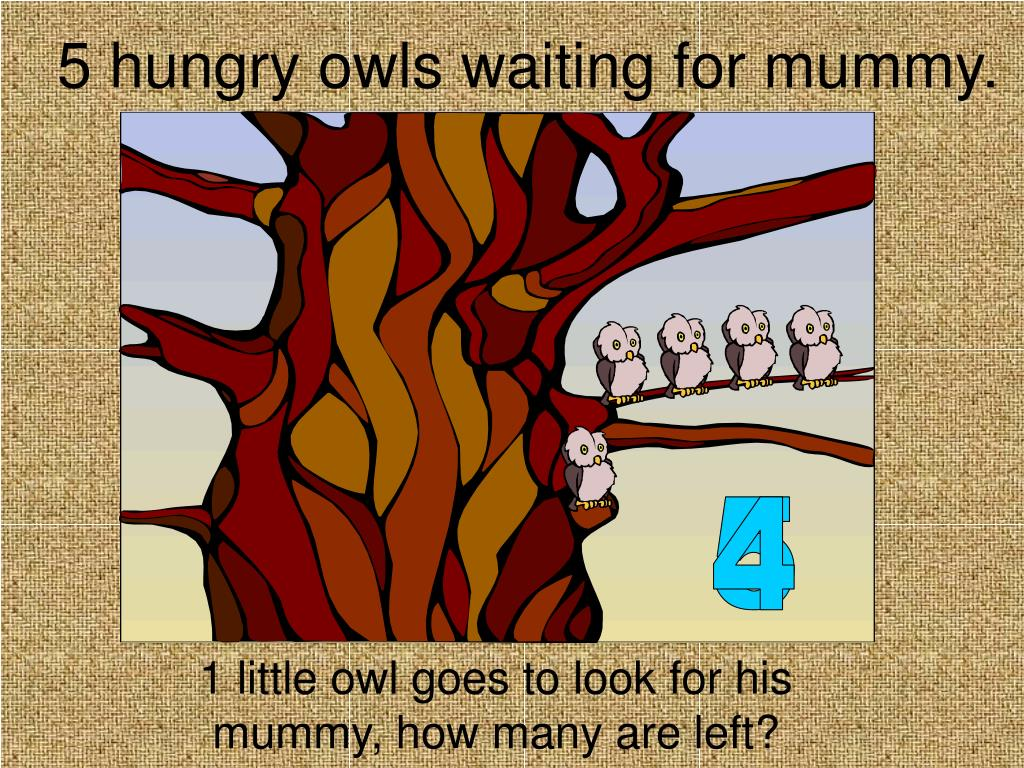 5 hungry owls waiting for mummy.