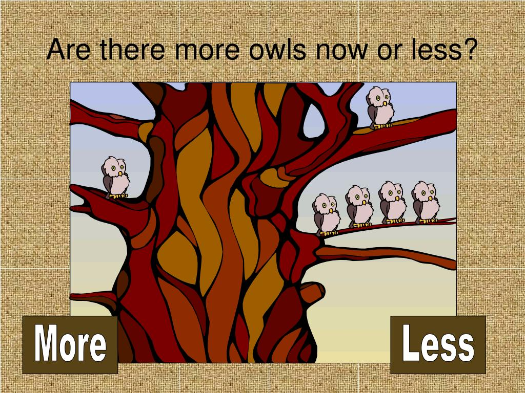 Are there more owls now or less?