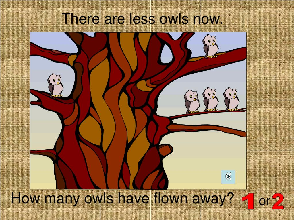 There are less owls now.