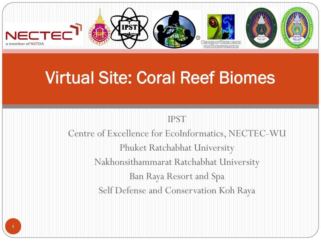 virtual site coral reef biomes l.