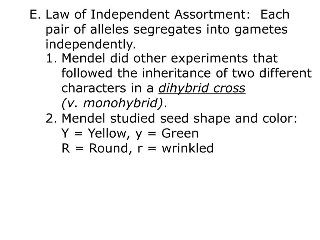 Law of Independent Assortment:  Each