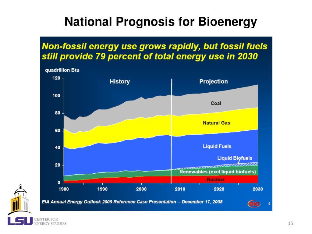 National Prognosis for Bioenergy