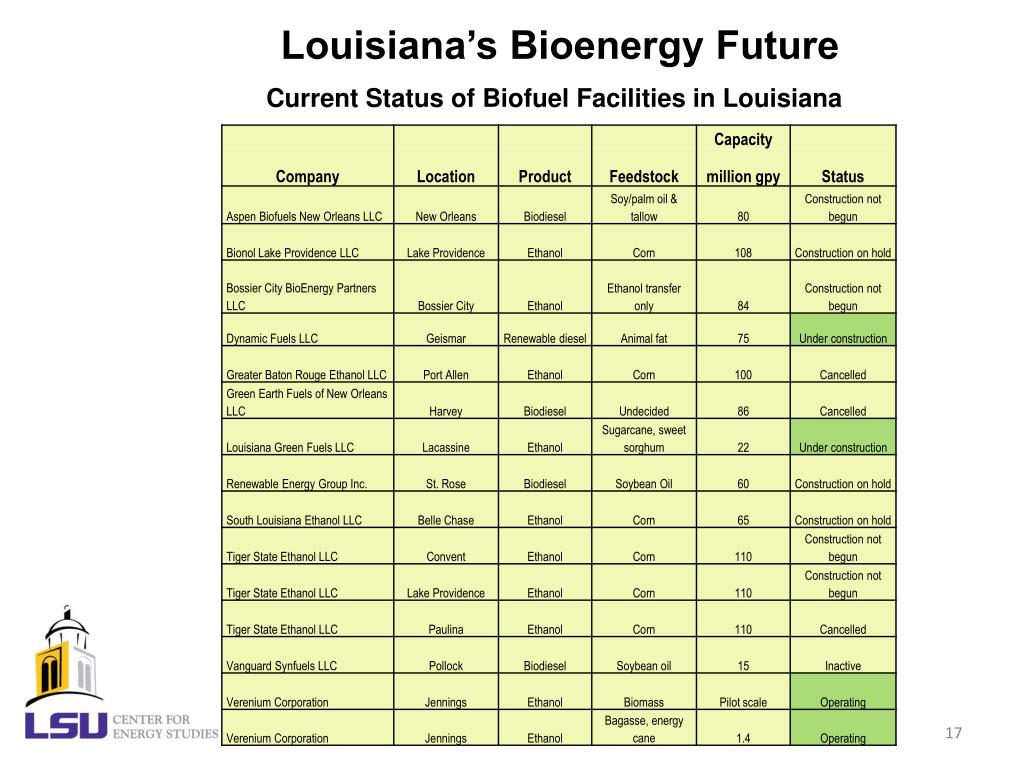 Louisiana's Bioenergy Future