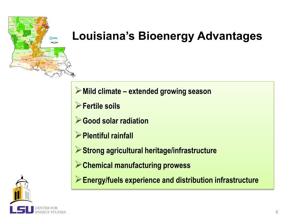 Louisiana's Bioenergy Advantages
