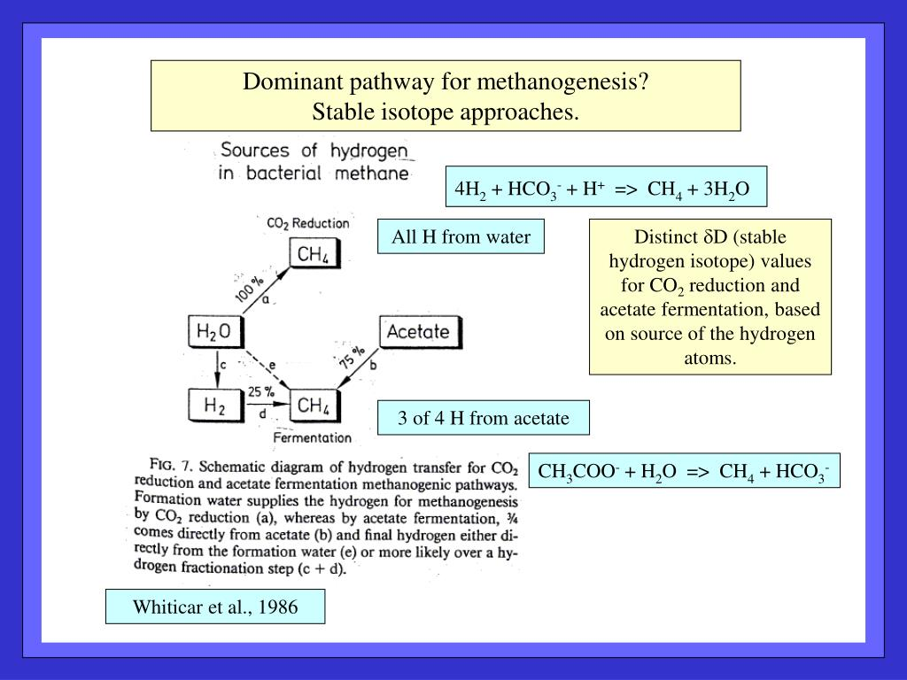 Dominant pathway for methanogenesis?
