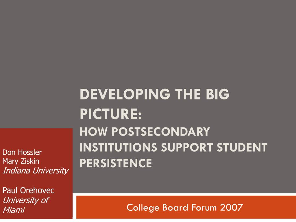 developing the big picture how postsecondary institutions support student persistence l.