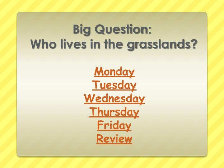 Big question who lives in the grasslands