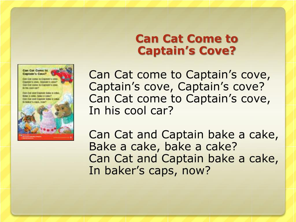 Can Cat Come to