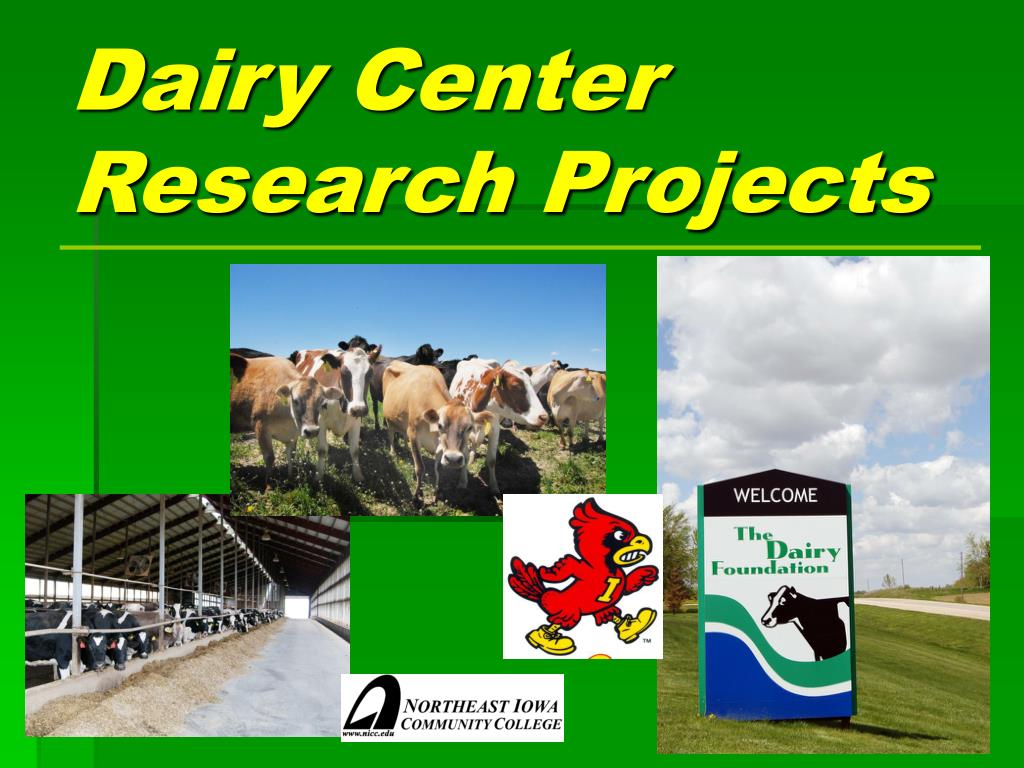dairy center research projects l.
