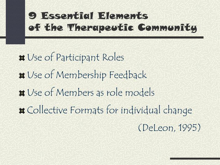 9 essential elements of the therapeutic community