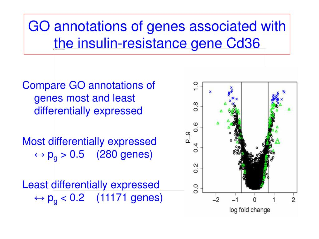 GO annotations of genes associated with the insulin-resistance gene Cd36