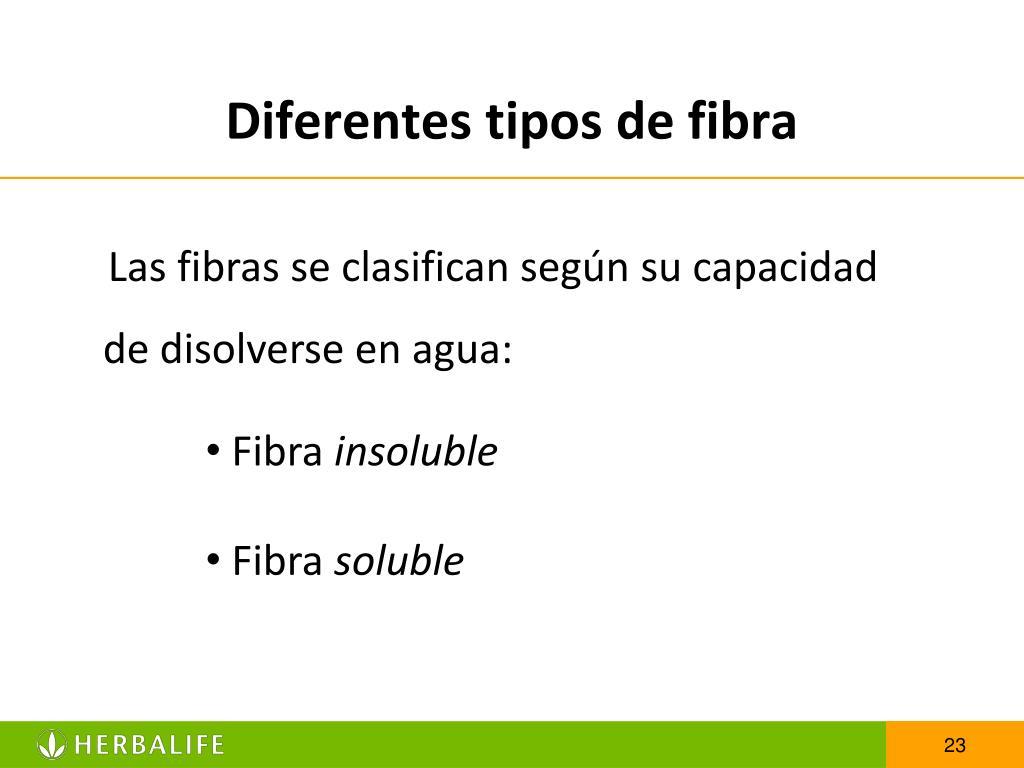 Diferentes tipos de fibra