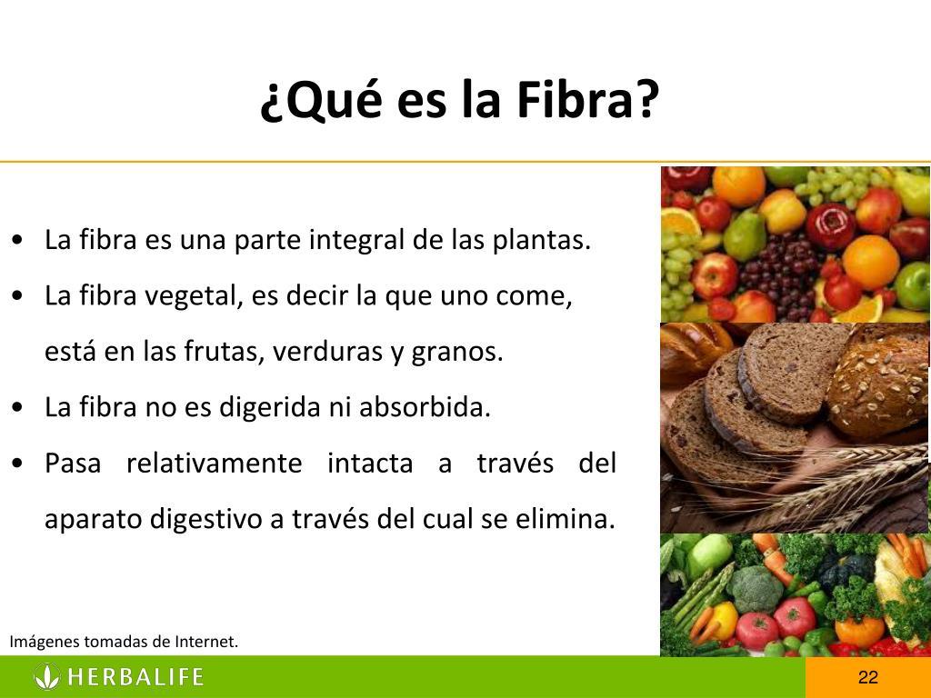 ¿Qué es la Fibra?