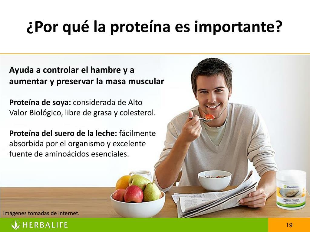 ¿Por qué la proteína es importante?