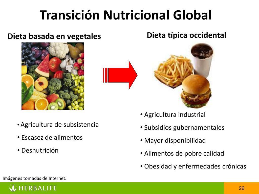 Transición Nutricional Global