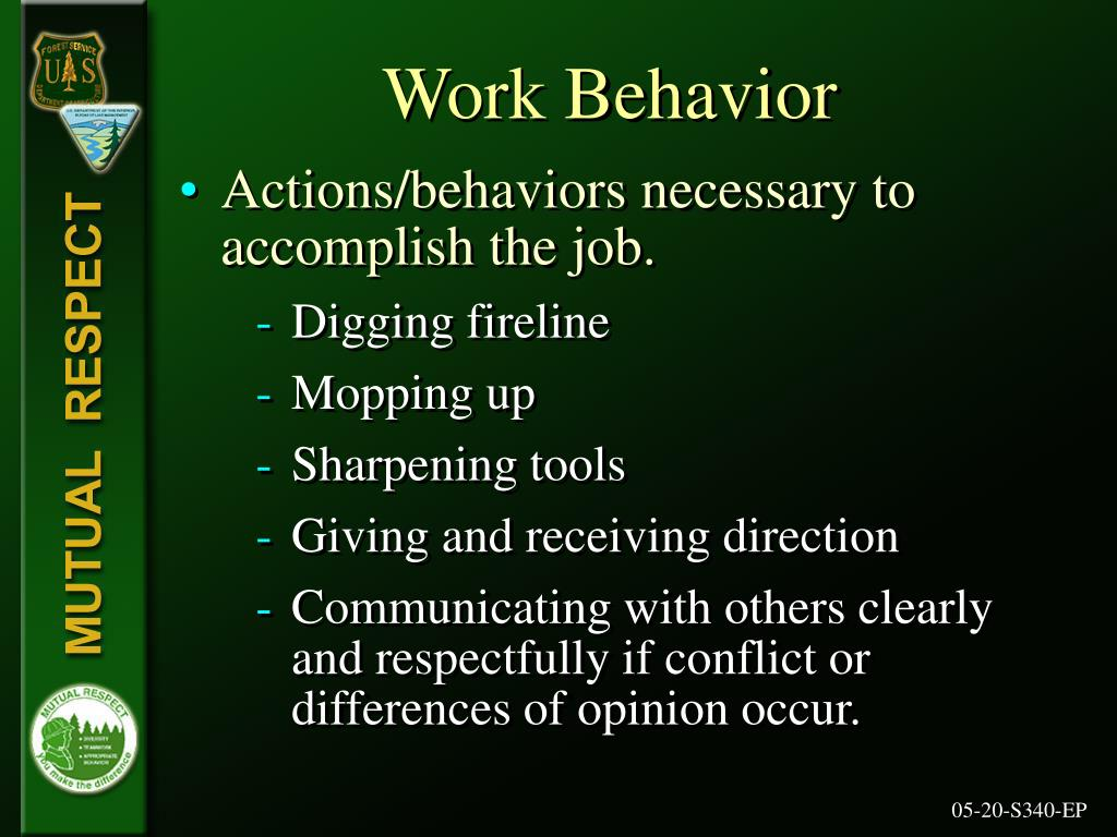 Work Behavior