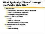 what typically flows through the public web site