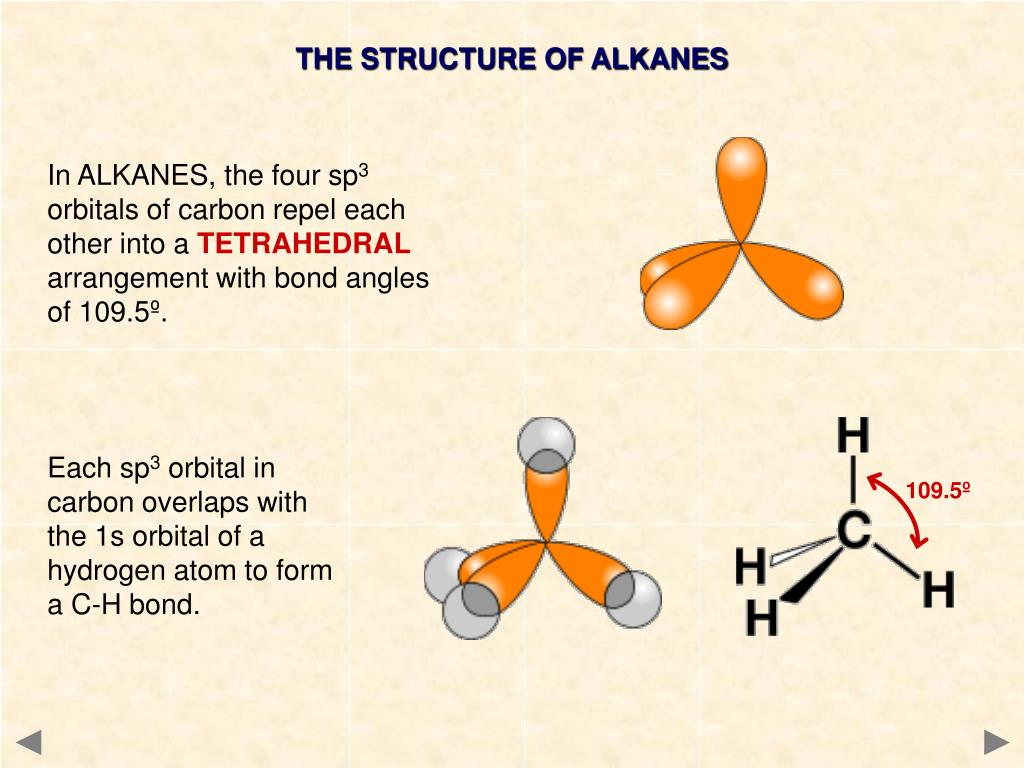 THE STRUCTURE OF ALKANES