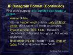 ip datagram format continued