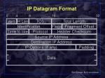 ip datagram format