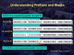 understanding prefixes and masks
