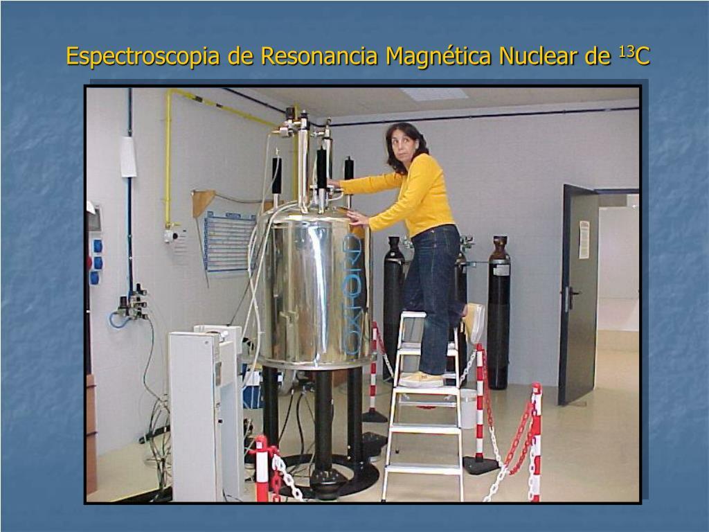 Espectroscopia de Resonancia Magnética Nuclear de