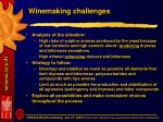 winemaking challenges