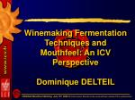 winemaking fermentation techniques and mouthfeel an icv perspective dominique delteil
