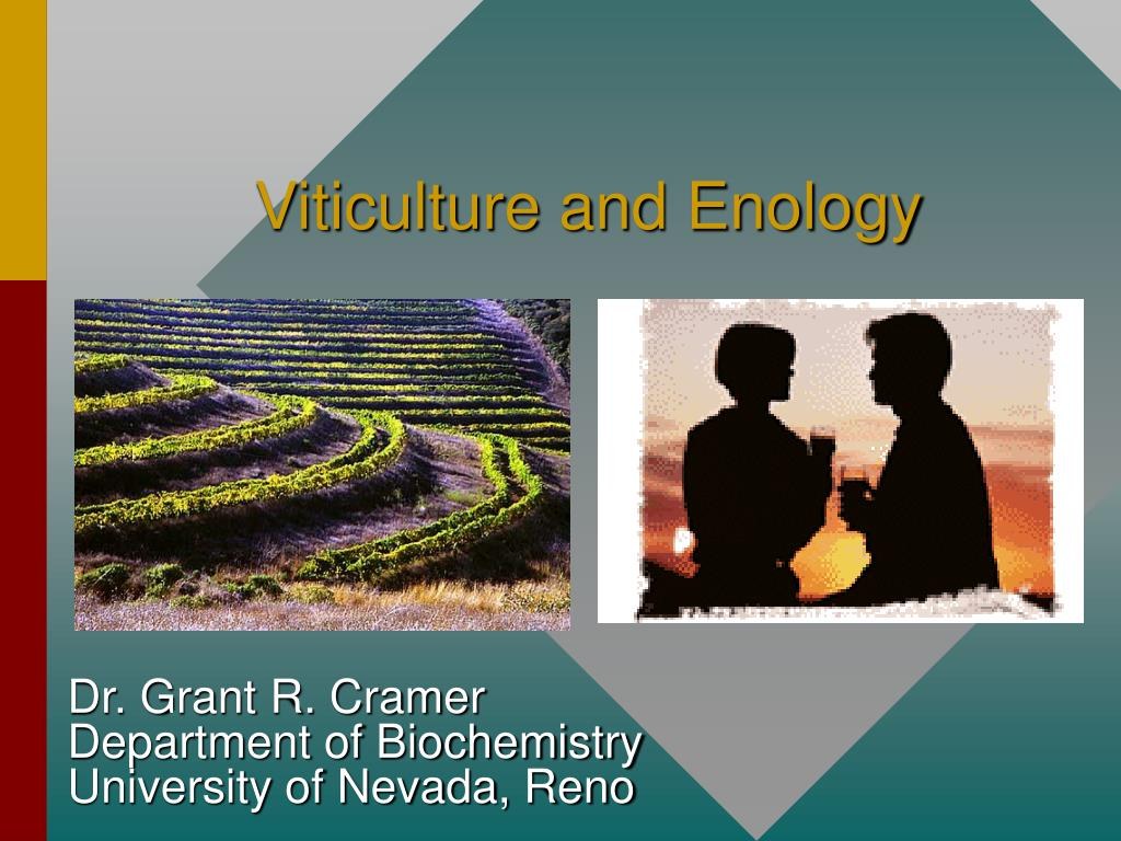 viticulture and enology l.