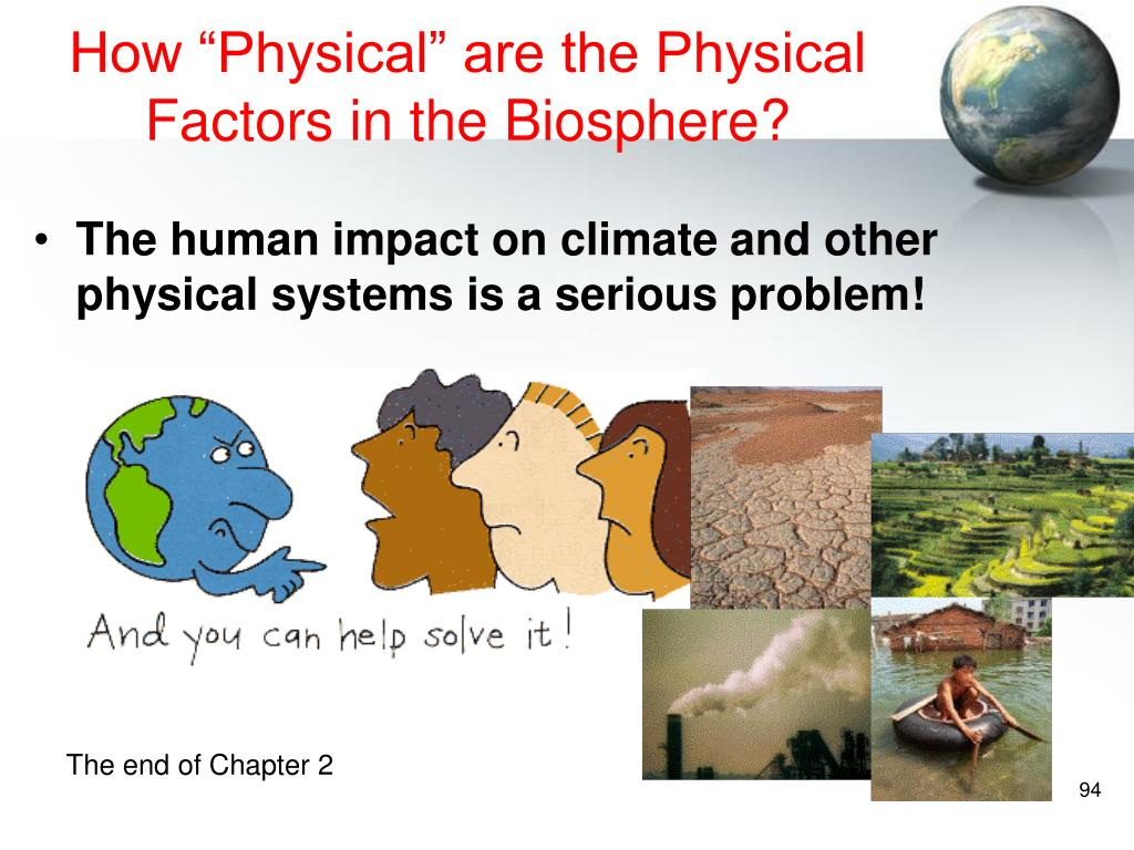 """How """"Physical"""" are the Physical Factors in the Biosphere?"""