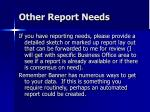 other report needs