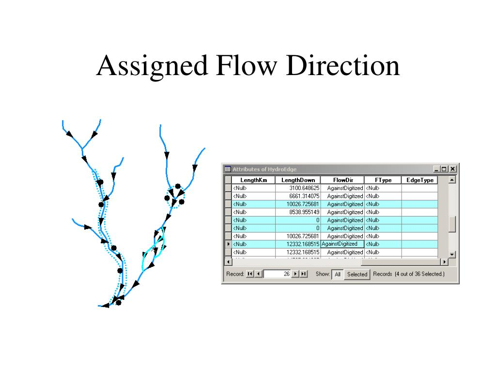 Assigned Flow Direction